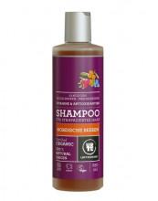 Urtekram, Shampoo Nordische Beeren, 250ml Flasche