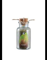Martina Gebhardt, Baobab Foot Bath, 300g Flasche